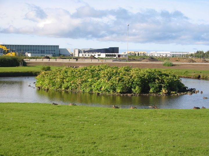 Vatnaskil urban development urban drainage and wetlands protection at vatnsmri iceland sciox Image collections